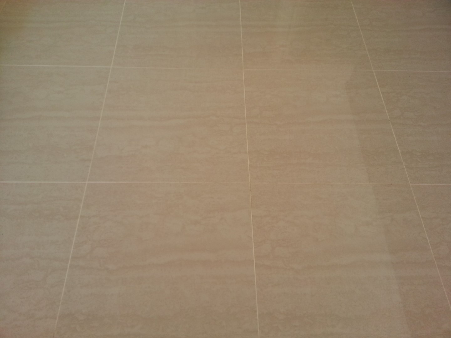 Porcelain Floor Tile Cleaning and Sealing
